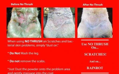 New NO THRUSH Pro Tips!